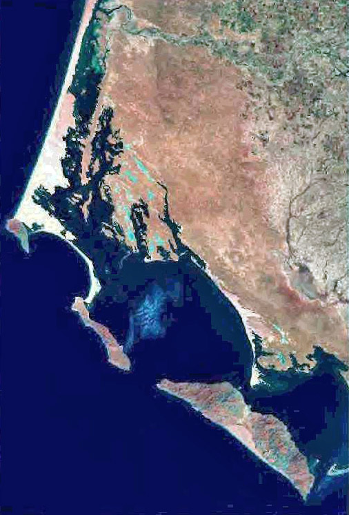 Satellite view of Bahia Magdalena