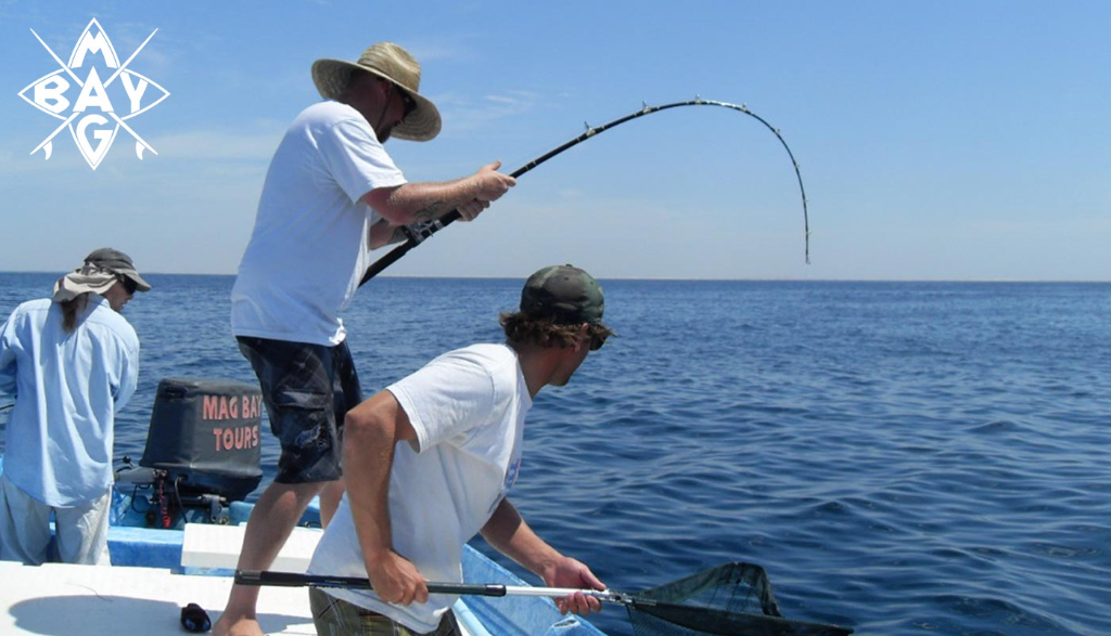 Fishing pole bent Mag Bay Mexico