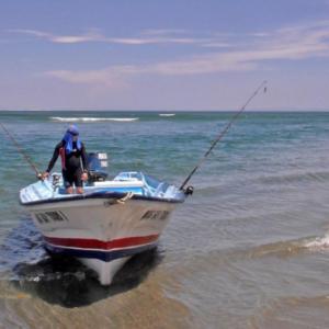 Ponga on beach, Mag Bay Mexico